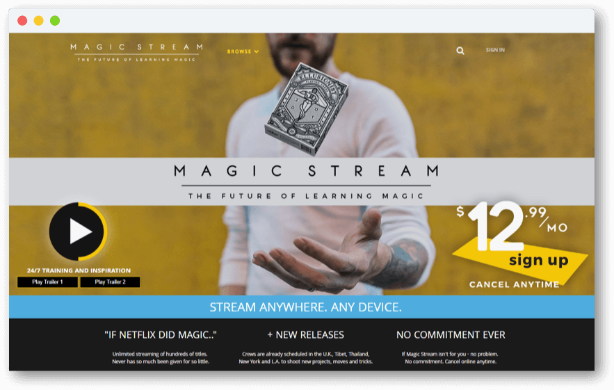 Magic Stream Subscription model