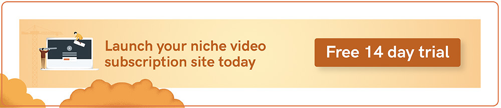 Niche video website CTA