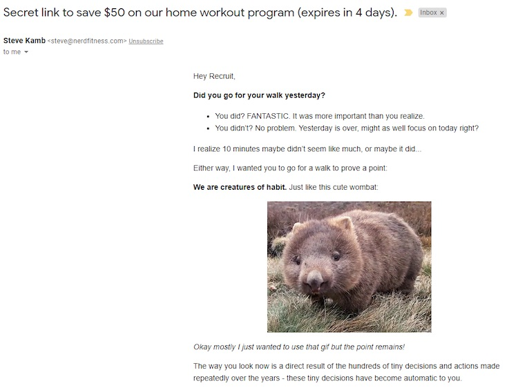 Email campaign example