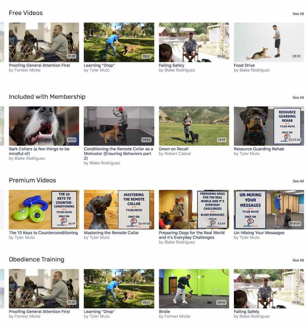 Consider the Dog VOD content catalog
