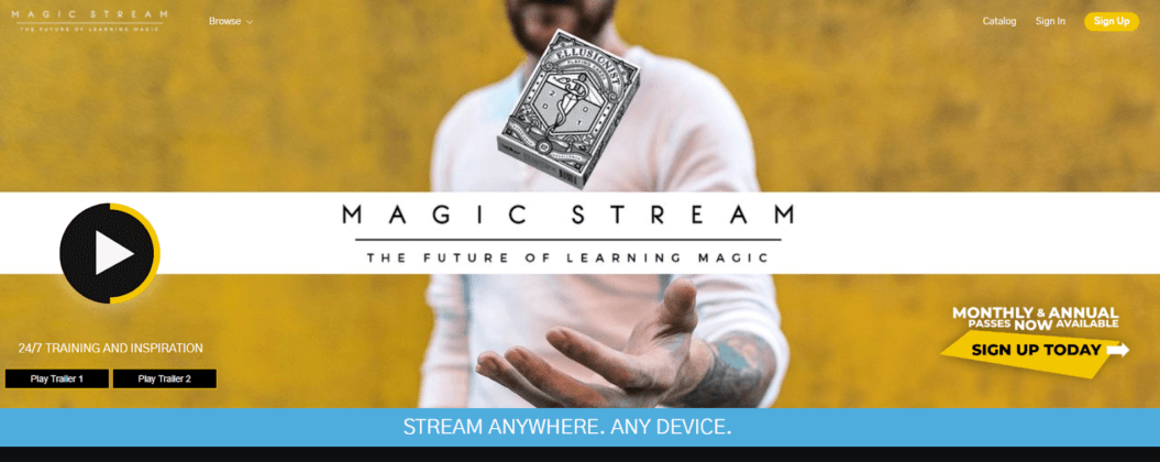 Academy elearning business model Magic Stream example