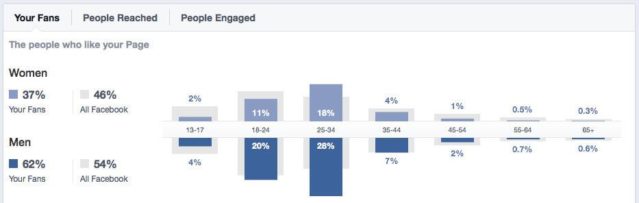 facebook audience analytics