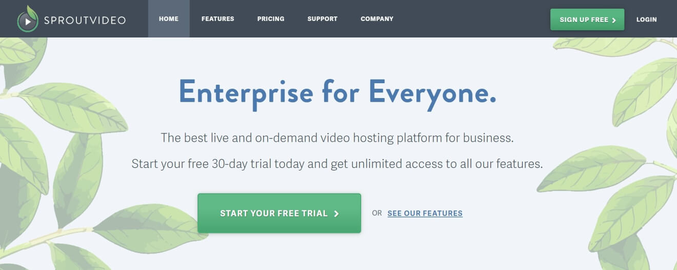 sprout video vod solution