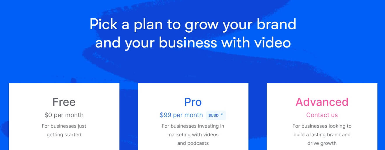 video on demand solution wistia pricing